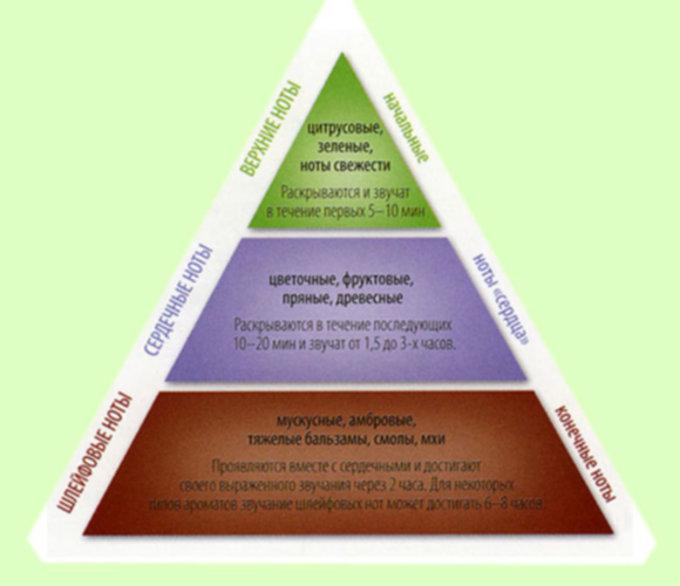пирамида ароматов